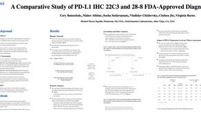 PD-L1檢查相關(AACR2017)