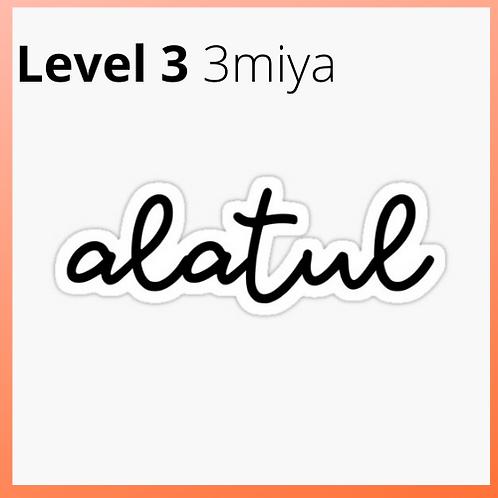 Arabic 3miya/ALATUL LEVEL 3 30 hours