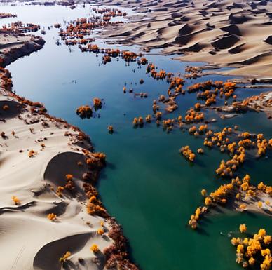 Tarim River (Inner Astronomy LP)