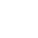 lightbulb_icon.png