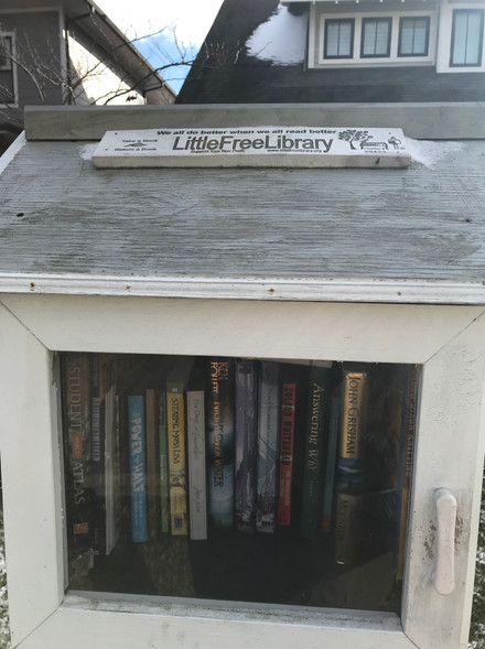 On my walk i stubbled accross this little library :)