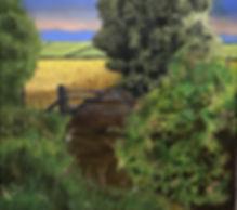 Koring lande (1).jpg