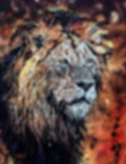 savvy(old-crater-lion)-oil-28x22.jpg