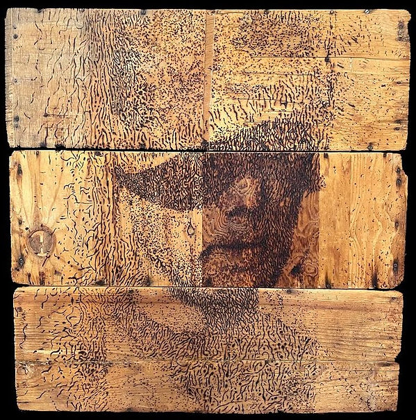 PARTIZAN ARCHIVE, Burnt Drawing on Recycled Wood, 35.5 x 35.5 x 3.jpg