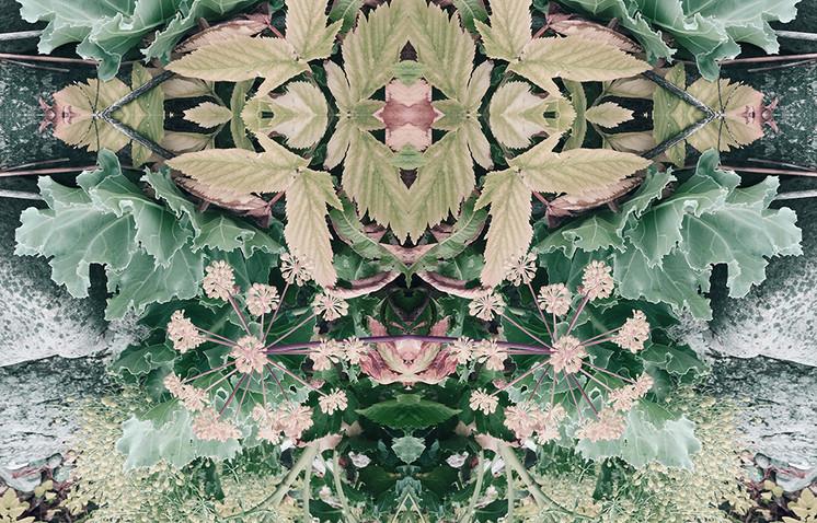"""""""Mother Earth Mandala"""" by: Karina McKenzie 78.75"""" x 39.37"""" Digital art print"""
