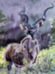 majestic-prince(greater-kudu)oil-48x36.j
