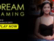 banner dream gaming