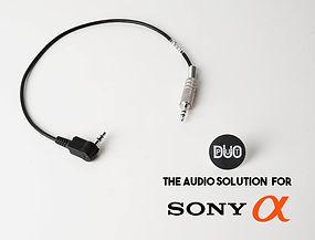 DuoPut sony ad.jpg