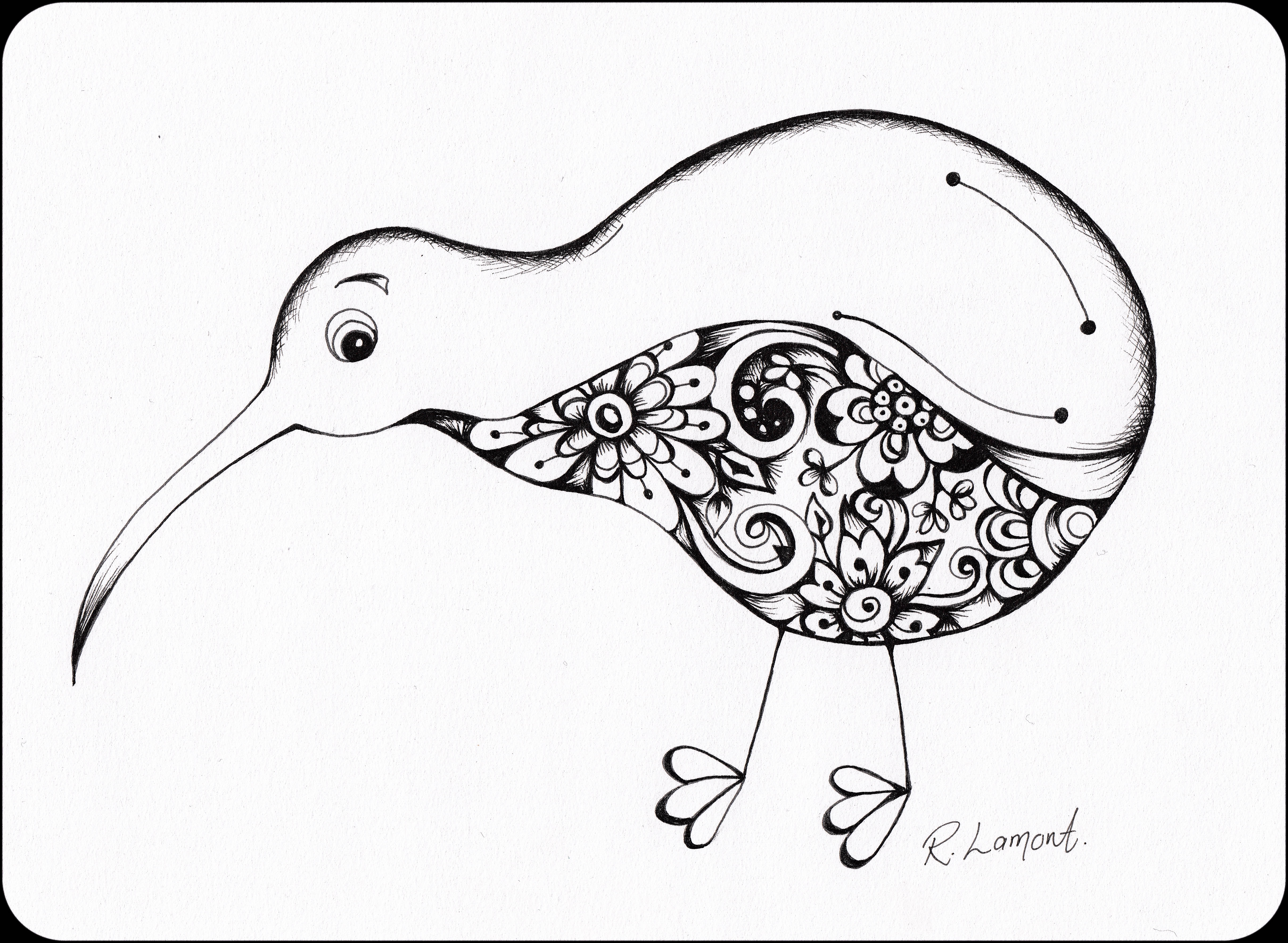 Kiwi 2 Illustration in ink