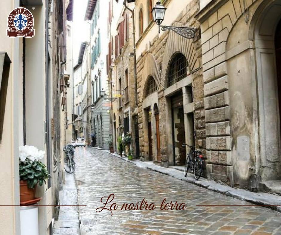 Via delle Terme a Firenze