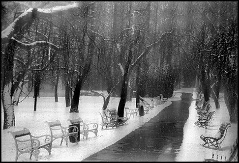 Winter garden, Prague, 2005