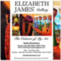 Th Colours Of My Art - Elizabeth James Gallery