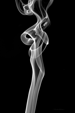 La Femme - Elizabeth James
