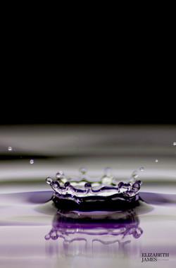 Purple Crown- Elizabeth James