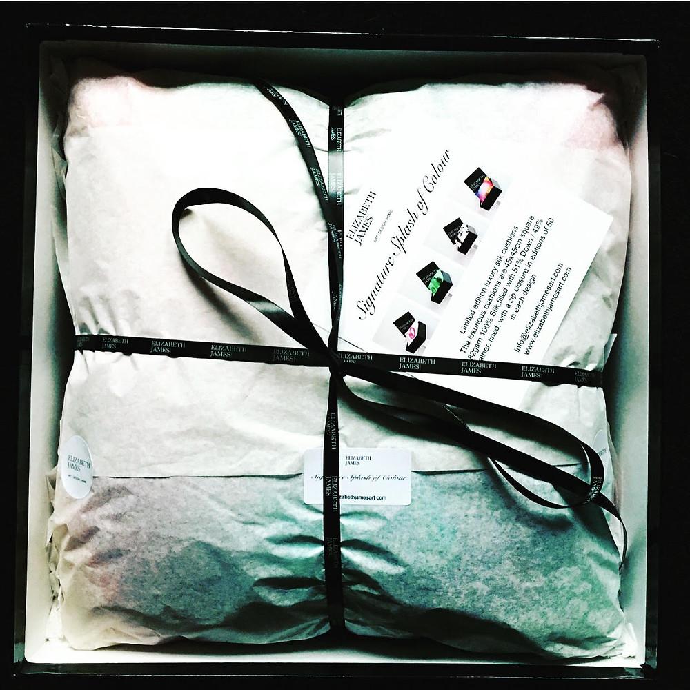 Elizabeth James - Signature Splash of Colour Silk Cushions