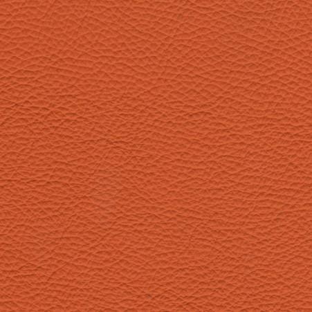 Torro Orange