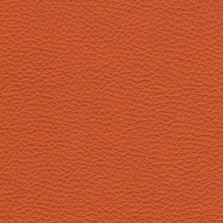 Torro oranje