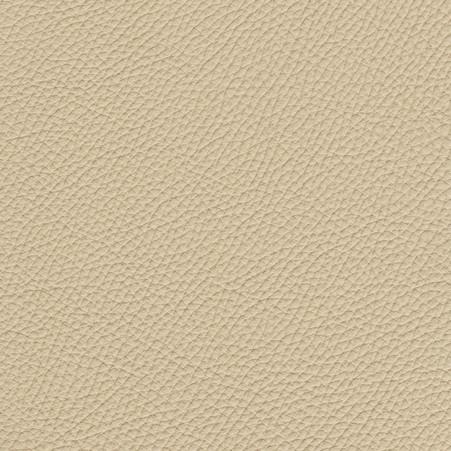 Torro ivoor