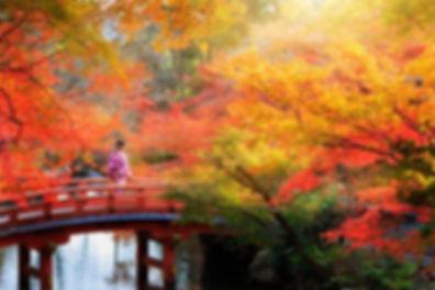 autumn-in-japan-brifge-hyoto-800x534.jpg