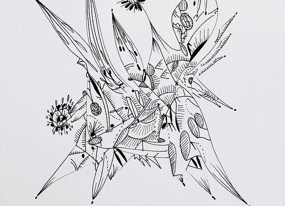 """""""fleur de courbe"""", 25x25, encre de chine sur papier, 2017"""