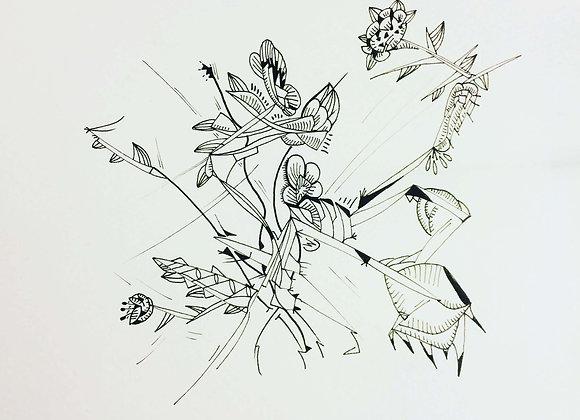 """""""fleur de pique"""", 25x25, encre de chine sur papier, 2017"""