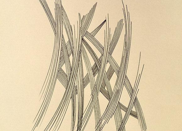 #8, 30 x 40 cm, feutre sur papier kraft, 2017