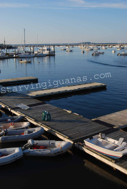 """[245]   """"Newport Pier"""""""