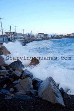 "[274]  ""Waves Crashing onto Street"""
