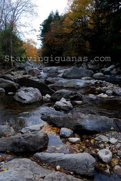 """[318]    """"Vermont Rocks"""""""