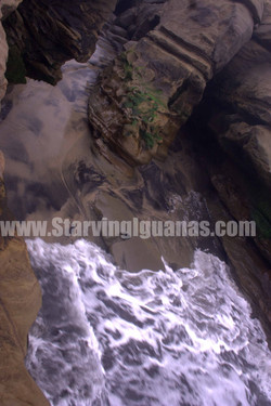"[184]   ""Rinsing Tides"""