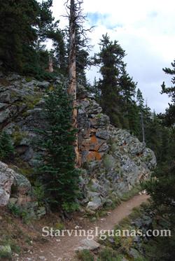 """[359]   """"Trail Onward"""""""