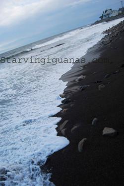 """[277]  """"Where Land Meets Sea"""""""