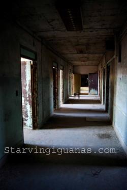 """[345]   """"Sun Lit Hallway"""""""