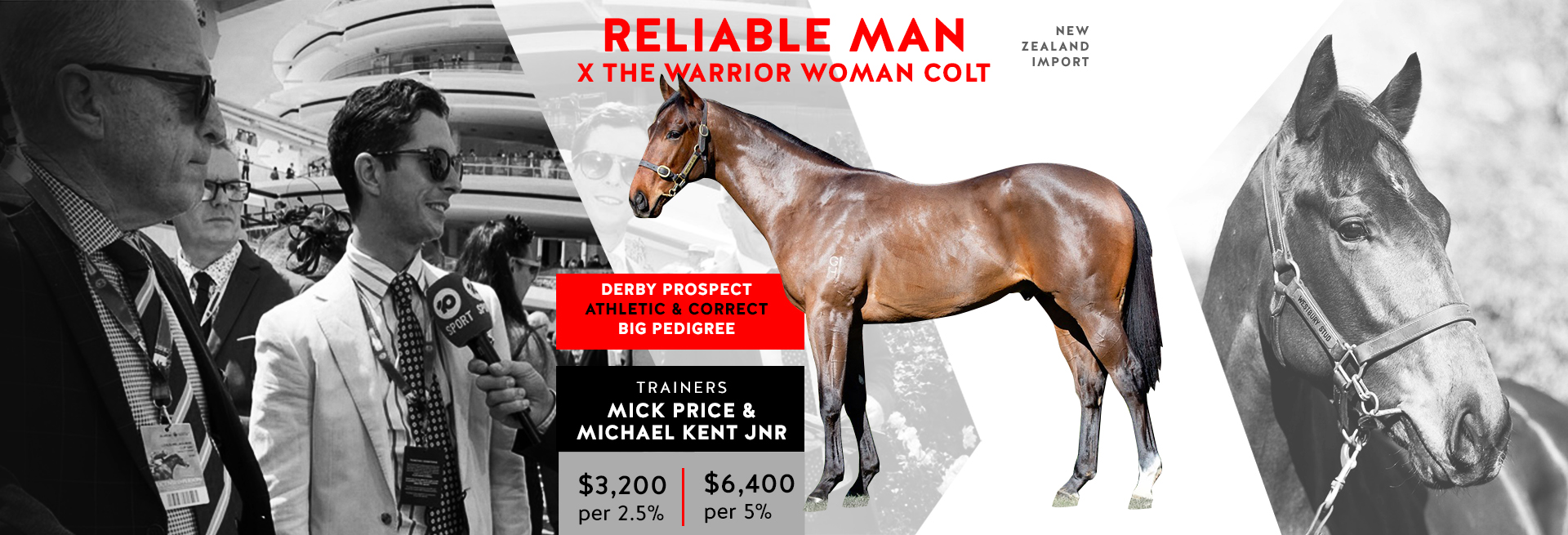 Seriously Bred Derby Prospect