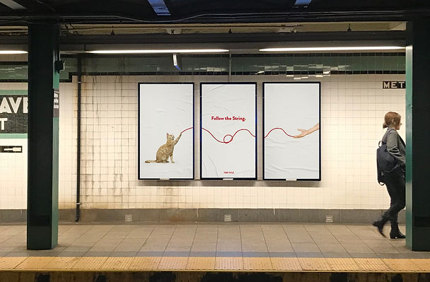 Ad Campaign Mockup 2 - Cat_edited.jpg