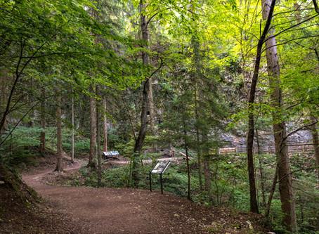 Quattro passi in Val di Non  2019 - seconda parte