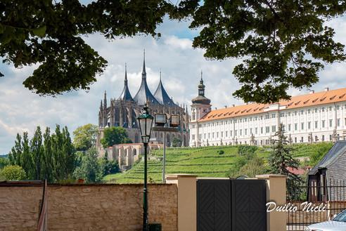 254 Praga Mont.jpg