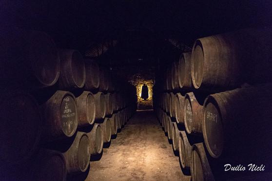 Cantina Sandeman - Villa de Gaia - Porto