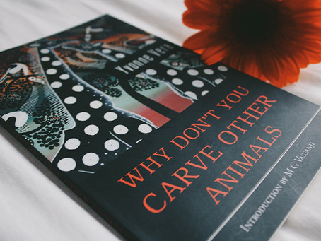 Why Don't You Carve Other Animals by Yvonne Vera