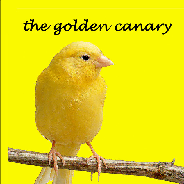 The Golden Canary