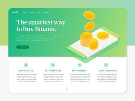 Bitcoin Website Landing Page