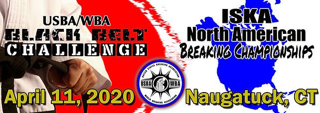 NA2020-logo.jpg