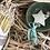 Thumbnail: Candle Advent Calendar.