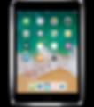 Apple-iPad-Mini-4_2x.png