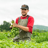 July 24 Harvest-9.jpg