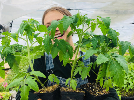 Time to Garden! Seedling Sale May 14-16!