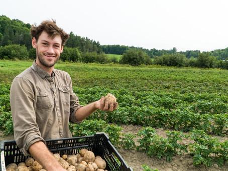 Work for food! / Travaillez pour la nourriture!