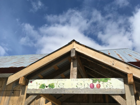 New (for now!) Store Hours at the Farm