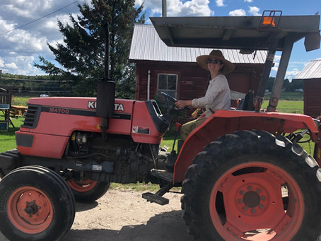 Fall Prep at the Farm!