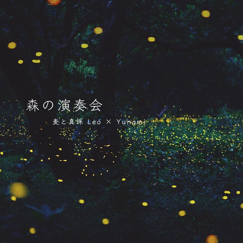【Live】森の演奏会